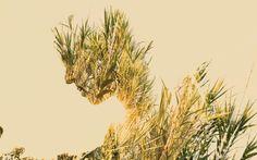 Spirit of Nature 6 by Gianluca Scolaro