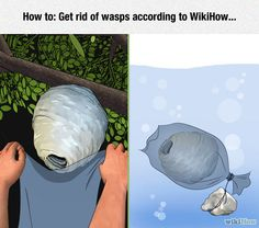 WikiHow Always Has The Solution