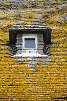 Window, Saint-Malo, Brittany, France