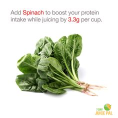 Add Spinach to boost your protein  intake while juicing by 3.3g per cup. #7dayjuicepal #boostyourprotein
