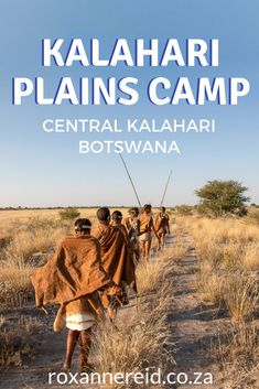 Experience Kalahari wilderness magic when you visit Kalahari Plains Camp in the Central Kalahari Game Reserve, Botswana. Bat Eared Fox, All About Africa, Kruger National Park, National Parks, Sleeping Under The Stars, Slow Travel, Cultural Experience, Game Reserve, Wild Dogs
