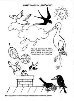 klikni pro další 41/384 Autumn Crafts, Spring Crafts, Autumn Activities For Kids, Crafts For Kids, Preschool Worksheets, Preschool Activities, Sequencing Pictures, Bird Theme, Forest Animals