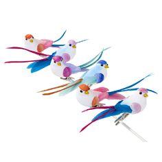 Deze prachtige vogeltjes zien er uit alsof ze elk moment kunnen gaan zingen. Vrolijke, kleurrijke wijsjes en deuntjes om lekker op te dansen. Een aanwinst voor elk feestje dus.