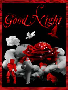 Good Night Sister, Cute Good Night, Good Night Gif, Good Night Sweet Dreams, Good Night Image, Good Night Quotes, Good Night Love Messages, Good Evening Greetings, Good Night Flowers