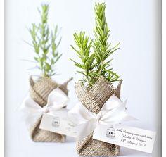 Eco-friendly wedding favors.