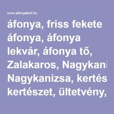 áfonya, friss fekete áfonya, áfonya lekvár, áfonya tő, Zalakaros, Nagykanizsa, kertészet, ültetvény, blueberry, Hungary