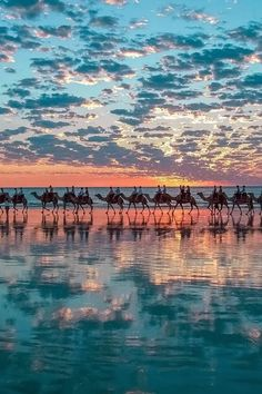 Dakhla - Morocco A line of camels against a perfect sunset. Beautiful World, Beautiful Places, Amazing Places, Amazing Sunsets, Beautiful Sunset, Amazing Things, Amazing Nature, Beautiful Pictures, Clouds Pattern