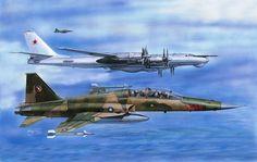 F-5F Tiger II RoCAF (H. Sasaki & T. Kurokawa)