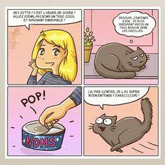 La vie des chats (et de leurs propriétaires) résumée par 15 bandes dessinées absolument géniales !