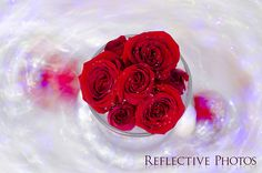 """""""Red Roses in a Diamond Glaze"""" Read all about my control freakism in post 51 of my #PhotoAnd100Words project. It has something to do with this photo, I swear!"""