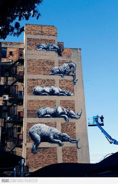 Awesome street art in Johannesburg, South Africa. Street art, are you telling me something?
