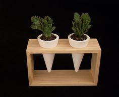 White concrete planters in wooden frame of chestnut wood Planter for mini succulent plants  Unique flower pot Confort gift for home decor by woodini on Etsy