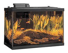 Aquarium Tank Filtration
