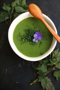 Spring Nettle Soup wholesome nourishing soup made with wild nettles. Veggie Soup Recipes, Plant Based Recipes, Vegan Recipes, Herb Recipes, Delicious Recipes, Easy Recipes, Tasty, Nirvana, Gourmet