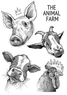 50 Farm Animals Drawing Ideas - New Cow Drawing, Doodle Drawing, Drawing Sketches, Drawing Ideas, Animal Sketches, Animal Drawings, Pencil Drawings, Art Drawings, Drawing Animals