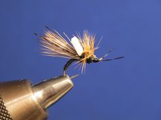 RYLEE'S CRIME SCENE CADDIS EMERGER- Lucas Langton | | Hatches Fly Tying Magazine