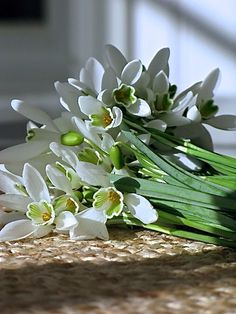 Ljusa drömmar på landet: blommor
