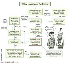 PHD Comics: What to call your Professor Graduate School Humor, College Humor, Phd Comics, Scientific Writing, Broken Spirit, College Success, Phd Student, Teacher Education, Teaching Tips