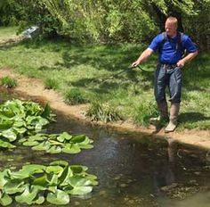 Pond herbicide application to treat non-native water lily encroaching on pond.