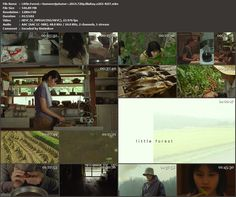 Pureness of the Symphony: [Movie] Little Forest: Summer & Autumn (2014)