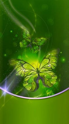 Butterfly Wallpaper Iphone, Iphone Wallpaper, Plant Leaves, Mandala, Lights, Green, Nature, Plants, Pink Wallpaper Iphone