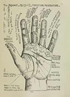 The hand of man palm reading diagram key to palmistry by louis the square of protection preservation m4hsunfo