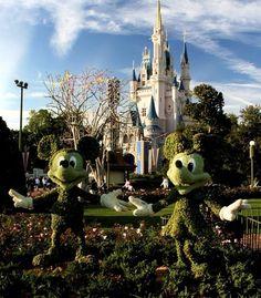 Cinderella's Castle in Walt Disney World in Orlando, still as magical as ever.