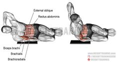 Side-lying biceps bodyweight curl. A compound bodyweight exercise. Target muscle: Biceps Brachii. Synergists: Brachialis, Brachioradialis, Internal and External Obliques, and Rectus Abdominis.