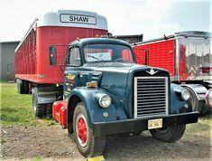 Millions of Semi Trucks Antique Trucks, Vintage Trucks, Cool Trucks, Big Trucks, Livestock Trailers, International Harvester Truck, Classic Trucks, Semi Trucks, Xenia Wood
