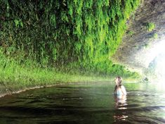 Wenn man dem Verlauf des Flusses Vézère in Südwestfrankreich folgt, kommt man an atemberaubenden Höhlen und Grotten vorbei, die dicht von Farn bewachsen sind. Dieses Bild entstand auf der Höhe von Le Tours.