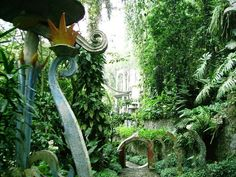 Las Pozas, in the small town of Xilitla  -  Extraordinary sculpture garden created by an eccentric English poet.