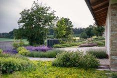 Zahrada zvlněná | Atelier Flera Planter Beds, Patio Planters, Landscape Architecture, Landscape Design, Boxwood Garden, Contemporary Garden Design, Good Morning Flowers, Blue Tones, Green And Purple