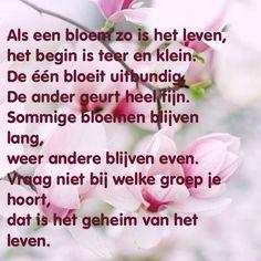 Als een bloem
