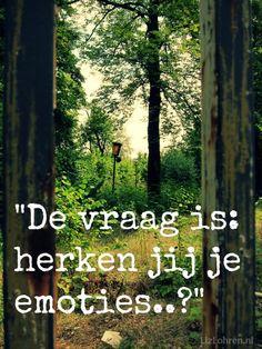 LizLohren.nl *** 365 Dagen Positief ~ Emoties Herkennen *** http://lizlohren.nl/365-dagen-positief-48/
