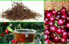 Mielőtt kidobnád a cseresznye- és a meggy szárát, ismerd meg jótékony hatásait Kuroko, Cherry, Fruit, Vegetables, Health, Food, Health Care, Essen, Vegetable Recipes