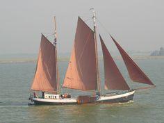 Zeilschip 'Westenwind' onder zeil. #zeiltochten #Zeilen #zeilschip Sailboat, Sailing Ships, Dutch, Boats, Classic, Green, Veil, Sailing Boat, Dutch Language