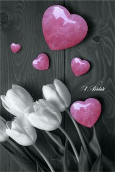 Color Splash Flowers and pink hearts