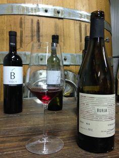 Les vins et vignobles de Slovénie : Primož Lavrenčič, le vigneron de la vallée de Vipava qui a une approche holistique du vin