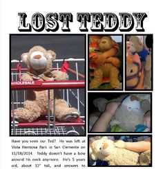 YAY! Teddy has been found!! --- Lost on 18/11/2014 @ Vista Hermosa Park, San Clemente, California. See picture - please contact k8thagr8@hotmail.com if found! Visit: https://whiteboomerang.com/lostteddy/msg/hdw395 (Posted by Kate on 22/11/2014)