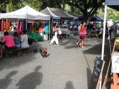 Saturday market, Rarotonga. Visit www.rumours-rarotonga.com
