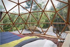 Hoe cool?! Deze cottage mét klimmuur staat in de bossen van Japan - Roomed