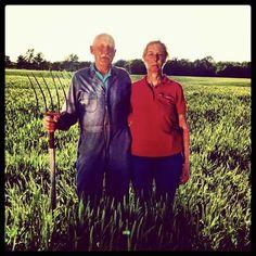 #Dr.Pol #FarmerFriday