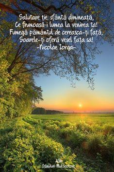 Motto, Alba, Inspirational, Quotes, Quotations, Mottos, Quote, Shut Up Quotes