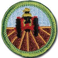 203 Best Merit Badges images | Scouts, Boy scouting, Boy scouts