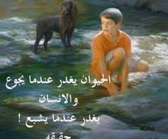 "Résultat de recherche d'images pour ""حكم وامثال عن الافعى"""
