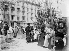 Fira de Rams a la plaça de Catalunya de Barcelona, ca. 1902. Autor desconegut..jpg