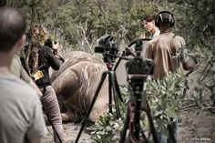 The CEO of Africa Geographic implores people to help ensure a controversial new documentary about rhinos is completed without censorship.