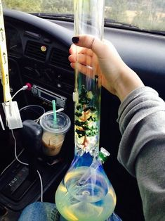 Glass Pipes And Bongs, Glass Bongs, Weed Bong, Weed Pipes, Water Bongs, Puff And Pass, Stoner Girl, Vape Tricks, Smoking Accessories