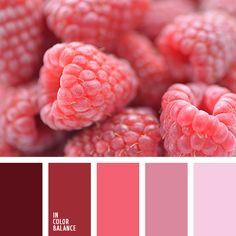 Color combination, color pallets, color palettes, color scheme, color inspiration. Color combination, color pallets, color palettes, color scheme, color inspiration.