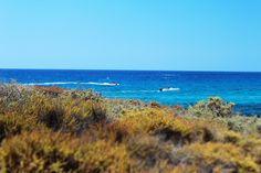 Zalatana Para cypr